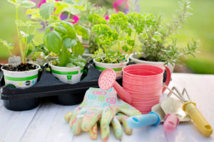 jardineria diabetes yosi light